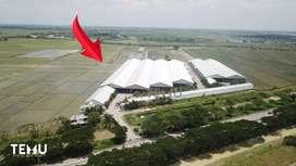Gedung Pabrik Besar dan Baru Rp 133M di Kab Demak - Jawa Tengah