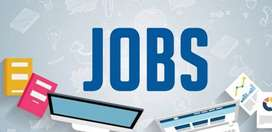 SEO Job Opening For Fresher Experience in Noida Delhi NCR