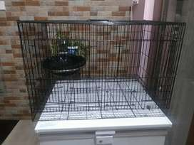2 feet by 1.5 feet cage for love birds