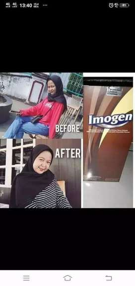 Imogen coklat Penggemuk badan, penambah nafsu makan dan berat badan