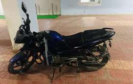 Decal Blue Pulsar 135 LS on Best Price