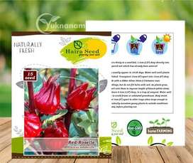 Benih Red Rosella