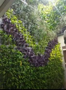 Tukang taman pasang vertical garden taman dingding