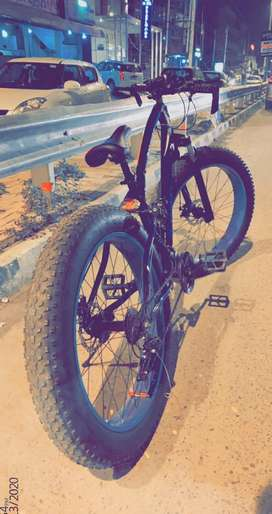 Fat bike cycle