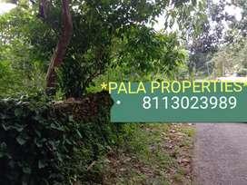 HOUSE PLOT SALE IN PALA RAMAPURAM ROAD NEAR GOOD RESIDENTIAL AREA