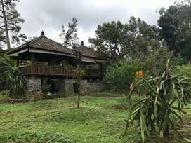 Dijual kebun Durian 4000 mtr, 500 mtr dari wisata Bhakti Alam