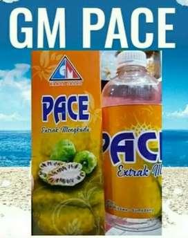 GM Pace (mengkudu)