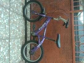 Sepeda Anak Aleoca