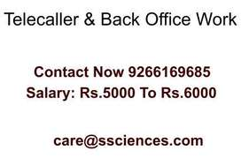 Telecaller & Back office work
