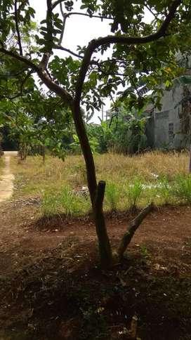 Tanah di jual dekat stasiun citayam