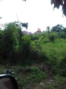 Tanah disewakan deket pasar cipadu jurangmangu