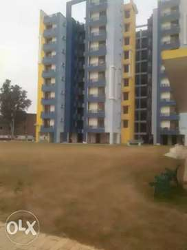 3 bhk Apartment available for rent near DAV college jalandhar