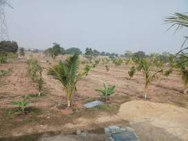 DTCP Approved Open plots for sale at Sadashivpet with clear tittle