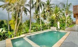 Rent sewa ID:B-41 Villa lumbung ubud gianyar bali near central ubud