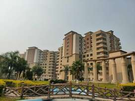 4 bed(duplex)Zarkon heights