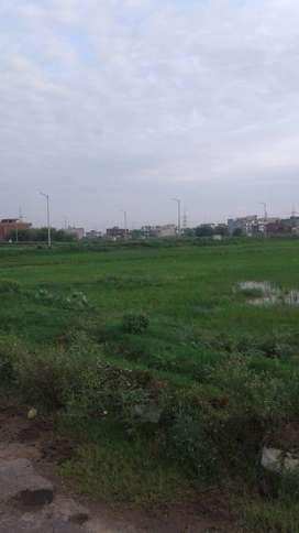 155 sq.yd Plot For Sale in Block C Aerocity Mohali