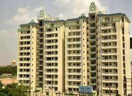 3 BHK Flat Ready To Move Available For Sale At Sector 6A, Telibagh