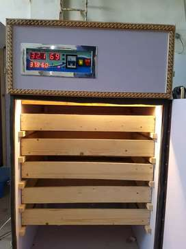 600 eggs manual incubator available