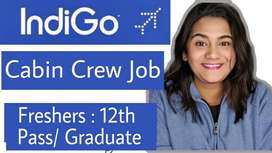 new hiring for airlines jobs
