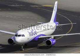 Huge vacancies Opened INDIGO AIRLINES All India - Make your career in