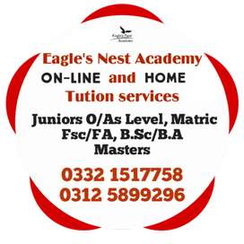 Online and Home Tutors Available