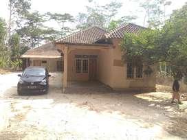 Dijual Cepat Tanah & Rumah Desa Sringin