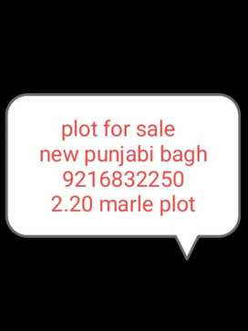 plot for new punjabi bagh sale urgent sale