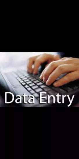 Data entry,Advisor,SNR advisor,Management work