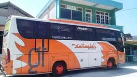 Medium bus isuzu