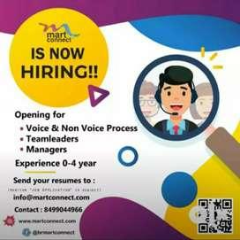 Urgent Requrment  hiring for Team Leader's & TeleCallers 25member's