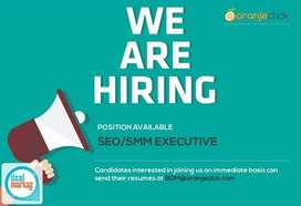 SEO Expert required for a full time jobs at our office