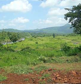Beautiful scenic view plots available for sale