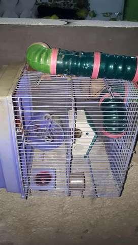 Kandang hamster & sugar glider