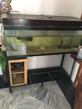 Fish Aquarium 4 feet length
