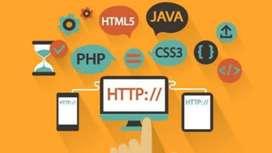 Web developer, freelancer