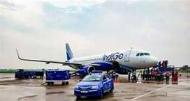 JOBs !!! Now open in indigo Airline High paid salary package