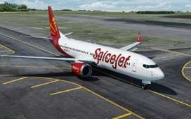 Spice jet airlinse hiring male female candidate for jobs
