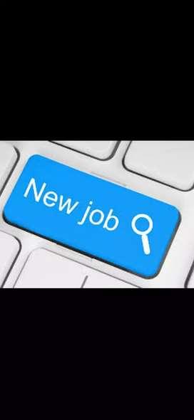 New job vacancy in company- mega walkins