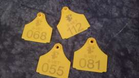 Ear tags goat /sheep /cows /Bulls/ zee tag/every kind of tags