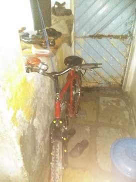 No. 1 cycle