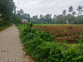 1 acre 80 cent Land for sale at Chengamanad 3 km