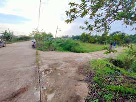 Tanah kosong luas murah di desa loa lepu