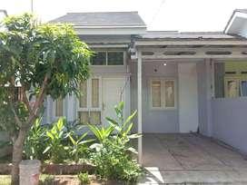 Dijual / Dikontrakan Rumah Villa Permata Hijau Serdang Serang Cilegon