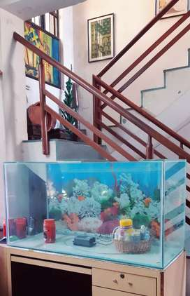 Fish tank for Home or Business