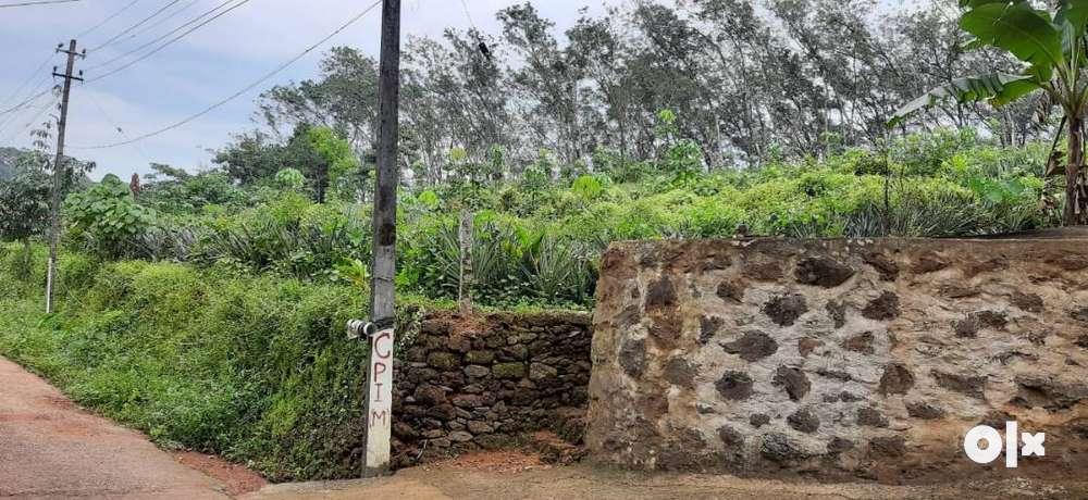 vakathanam - 1 acre plot for sale