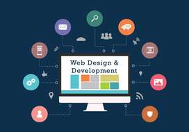 Web Developer ( PHP )