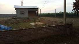 1 kotha 5 leecha Myadi land in Sonapur. 50 metre from main road.