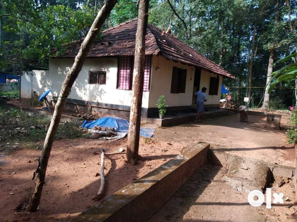 property for sale at kodanad