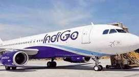 Ground Staff job indigo Airlines Company at Airport for different area