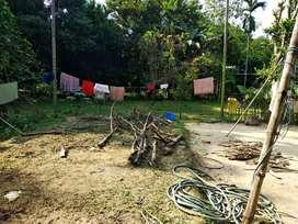 Miyadi patta land for sale